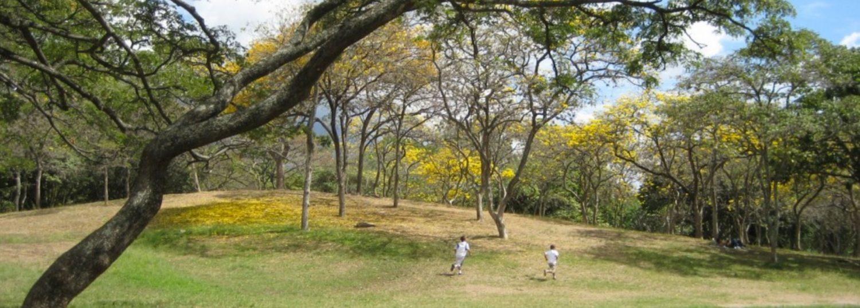Boys running up hill in designed landscape